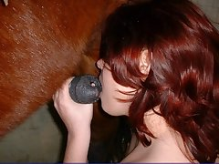 Big tits gal takes a horse cock in her ass and pussy
