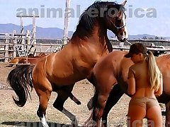 Huge stallion wide edacity with very horny beauty